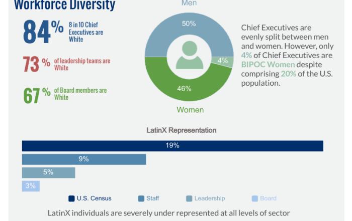 BRIDGE Infographic on Workforce Diversity